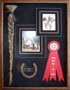 horse tail & ribbon